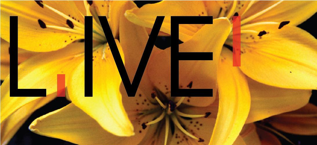 TO CREATE LOVE